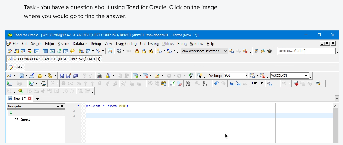 Task  - You have a question about using Toad for Oracle. Click on the image where you would go to find the answer.